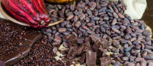uma imagem sobre chocolate com cacau orgânico